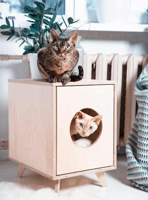 cat-litter-box-pet-house