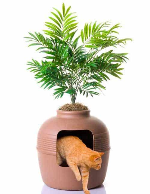 Plant-Hidden-Litter-Box